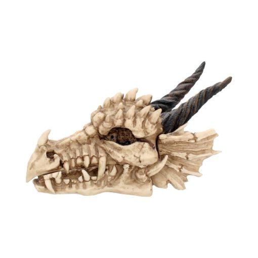 Dragon Skull Box 20cm