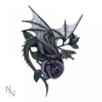 Dragon Beauty Wall Plaque AS 40cm