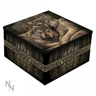 Mirror Box Loyal Companion (LP) 10cm