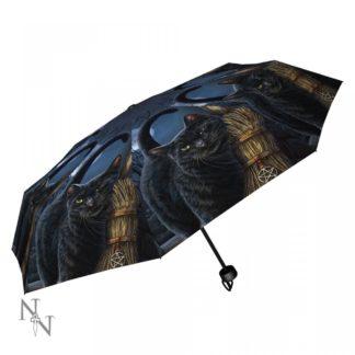 A Brush With Magick Umbrella (LP)