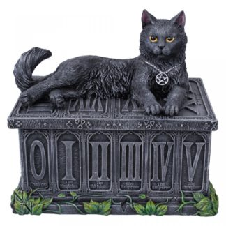 Fortune's Watcher Tarot Box 17cm