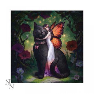 Light Up Cushion Cat and Fairy (JR) 40cm