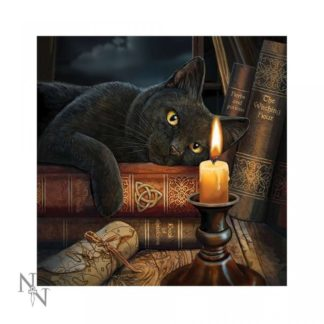 Light Up Cushion Witching Hour (LP) 40cm