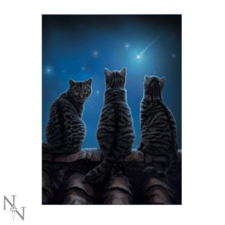3D Picture Wish Upon a Star 28.5 x 38.5cm (LP)