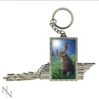 3D Keyring Solstice (LP) 5.6cm (Pack of 10)