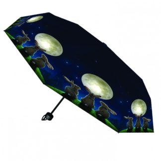 Moon Shadows Umbrella (LP)