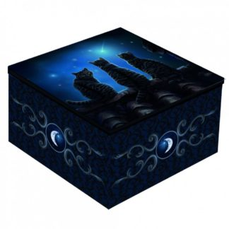 Wish Upon a Star Mirror Box (LP) 10cm