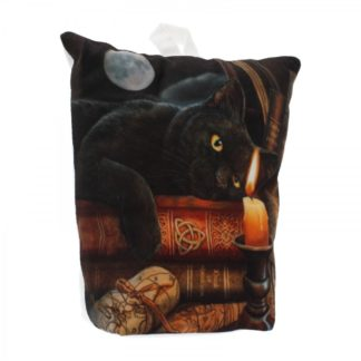 Witching Hour (LP) LED Door Stop 18cm