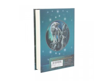 Embossed Journal Guidance (LP) 17cm