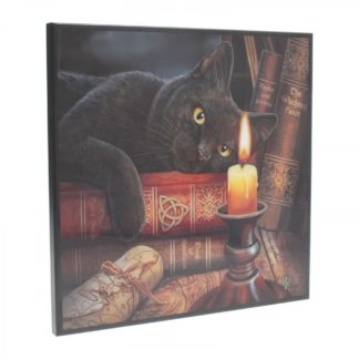 Witching Hour Small Crystal Clear Picture LP 25cm