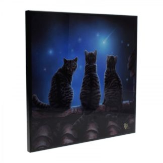 Wish Upon a Star Small Crystal Clear Picture 25cm