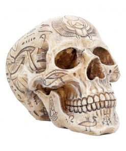 Hieroglyphic Skull 15cm