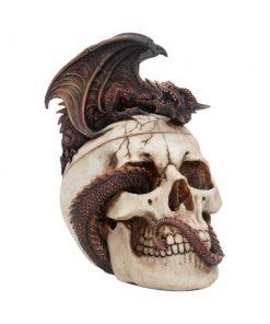 Draconic Craniotomy 19.6cm