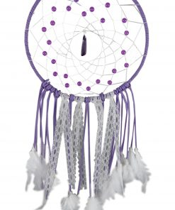 Purple Purity 20cm