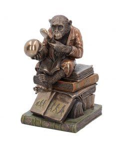 Darwinism of Evolutionary Theory  17.5cm