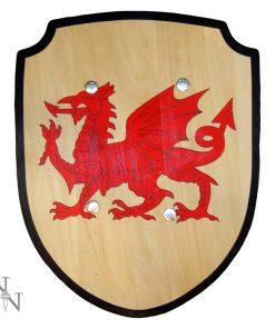 Welsh Shield 34cm