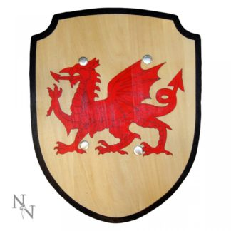 Welsh Shield 34cm