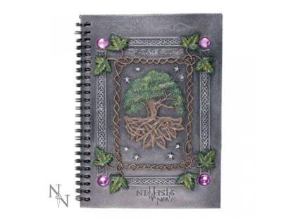 Dream Book (21cm)
