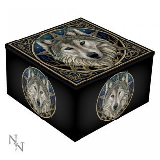 Wild One Mirror Box (LP) 10cm