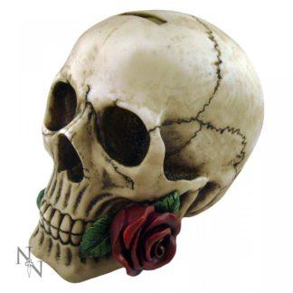 Argentine Skull 15cm