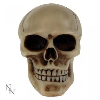 Skull Gear Knob 8cm