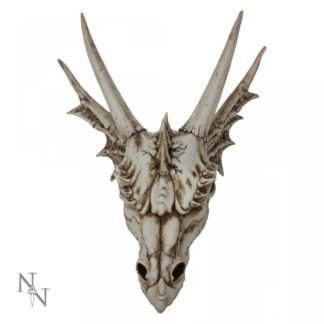 The Last Dragon Skull 32cm