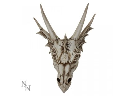The Last Dragon Skull 32cm
