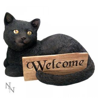 Cat's Welcome 36.5cm