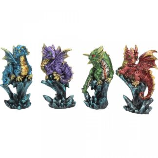 Dragonling Brood (Set of 4)