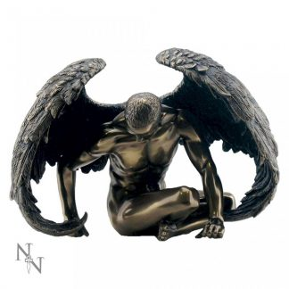 Angels Rest 20cm